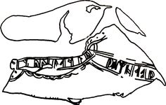 Runic embroidered leather shoe from the medieval wharf district of 12th century Bryggen (Berggen, Norway) Shoe B605 (Spurkland and van der Hoek, 2005;183) reads ...am(or)u-iciþomnia..., which has been normalised to amor vincit omnia (love conquers all). A total of 5 shoes have been found embroidered in both Latin and Old Norse.