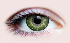 Aurora Jade Enhance and highlight your natural eye color with our Primal Delicate line of cosmetic color contact lenses. **The Primal Delicate line Natural Contact Lenses, Cosmetic Contact Lenses, Coloured Contact Lenses, Cat Eye Contacts, Halloween Contacts, Halloween Eyes, Costume Contact Lenses, Brown Rings, Monochrome Color