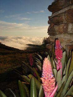 A Serra da Mantiqueira é uma cadeia de montanhas que fica no Sul de Minas Gerais, se estende para SP e Rio de Janeiro. É uma das mais belas regiões do Brasil, atraindo todos os anos casais e amantes da natureza para passeios. São passeios incríveis, em lugares de tirar o fôlego, realmente inesquecíveis.