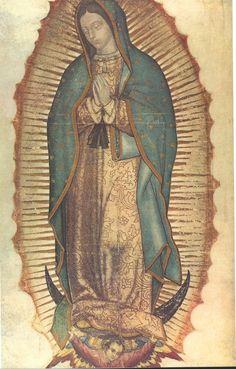 グアダルペの聖母