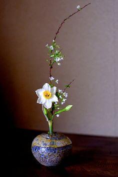 DSCF2273 | lotus-aki | Flickr