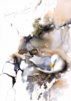 Scottish artist Lucy Newton specialises in wildlife painting. Beautiful sensitive studies of native Scottish birds and animals. Watercolor Paintings Nature, Watercolor Pictures, Wildlife Paintings, Watercolor Artists, Watercolor Animals, Wildlife Art, Abstract Watercolor, Animal Paintings, Watercolours
