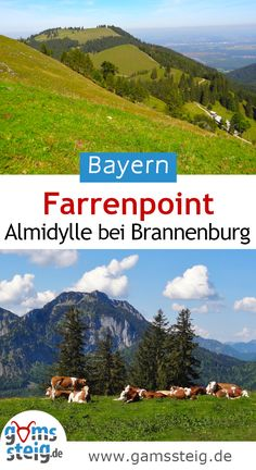 Mountains, Nature, Places Worth Visiting, Mountaineering, Tours, Naturaleza, Bergen, Scenery