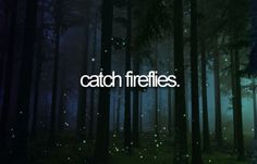 I've never seen fireflies before. I want to see them and catch them and name them then set them free! Summer Bucket List 2016, Stuff To Do, Things To Do, Catching Fireflies, Life List, Never Stop Dreaming, Before I Die, Lets Do It, Summer Fun