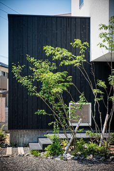 外壁素材と植栽の組み合わせ。 板貼り、塗壁、植栽。 #黒 #タイル #板貼り #白壁 #塗壁 #左官壁 #ステン #サッシ #植栽 #造園 #シンボルツリー #トネリコ #アオダモ #陰影 #木の陰 #経年変化 #経年美化 #設計士 #設計事務所 #設計士とつくる #デザイナーズ住宅 #デザイン住宅 #コラボハウス #香川 #愛媛 Exterior Design, Aquarium, Japanese, Kazuya, Architecture, Garden, Instagram Posts, Plants, House