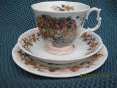 Brambly Hedge collector's china!