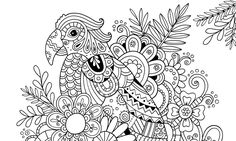 Beautifully Intricate And Ornate Illustration Coloring Books For Adults Are Rising In Popularity With The