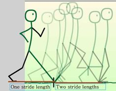 How to Create a Basic Animated Walk-Cycle: Adjusting Motion to Reflect Stride Length Character Drawing, Character Design, Animation Walk Cycle, Frame By Frame Animation, Design Research, Stick Figures, Animated Gif, Yolo, Create