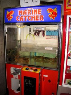 World's weirdest vending machines