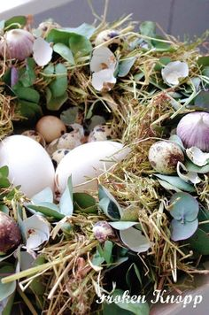 Froken Knopp blog. Open through google translate. She covered this wreath with hay and eucalyptus. Added duck eggs and garlic bulbs
