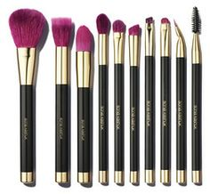 Sonia Kashuk Fall Brush Up 10–Piece Brush Set from Target Canada $29.99