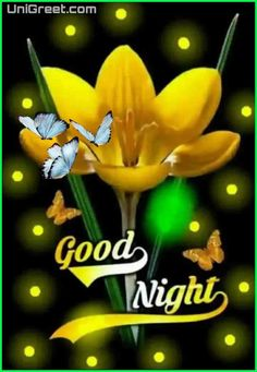 Good Night Images – Nothing can be as great as having some attractive Good Night Images Wallpaper HD Happy Good Night, Good Night Family, Good Night Hindi, Romantic Good Night, Good Night Prayer, Cute Good Night, Good Night Friends, Good Night Blessings, Good Night Greetings