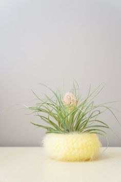 Spun Sugar Air Plant Bowl in Yellow / Airplant Pot / Desk Organization / Woven Yellow Pod / Fluffy Yarn Bowl / Crochet Basket