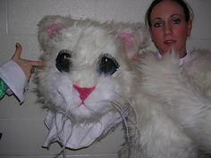 Happy 21st Birthday, Onesie Pajamas, Fursuit, Mascot Costumes, Onesies, Geek Stuff, Kawaii, Cosplay, Animals