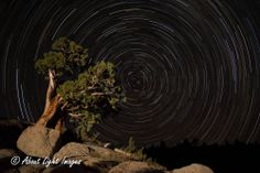 Star Trails at Sonora Pass by About Light Images.  aboutlightimages.com
