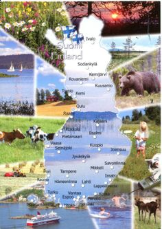 1260 FINLAND - The map and the flag of the country Finland Map, Finland Travel, Finnish Language, Thinking Day, Famous Places, Europe, Helsinki, Norway, Country