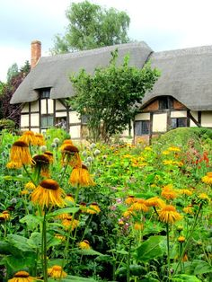 Ann Hathaway's cottage (Shakespeare's wife)