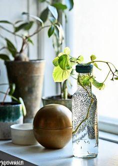 Posliinitussilla koristellut maljakot   Kotivinkki