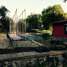 Orto work in progress!! #villaselva #countryhouse #countrylife #ristorante #food #foodlovers #organicfood #healthyfood #foodandwine #umbria #umbrialovers #umbriaturism #grutti #santerenziano #gualdocattaneo #todi #montefalco #bevagna ..veniteci a trovare!!