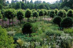 Home Farm — Dan Pearson Studio / repinned by Llewellyn Landscape & Garden Design www.llgd.co.uk