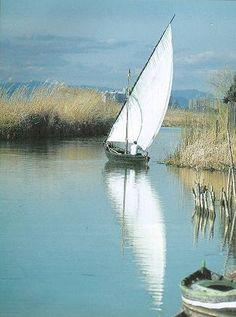Barca en Mata del Fang -  Parc Natural de l'Albufera, València - Foto de Paco Catalá