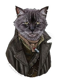 Doctor Mew returns, with War Cat and Capaldi Cat