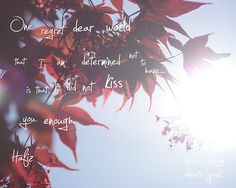 From today's post on unplugging... I love this quote by Hafiz!