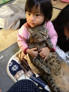 """埋め込み画像 - the cat's face, tho, as if says, """"I'm done with my life"""" lol"""