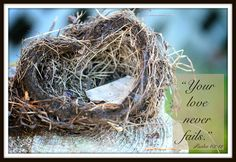 My heart was broken recently by a dream. I'd love for you to share a time when God sent a special message just for you. Heart Reflected: An empty nest