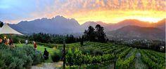 Dieu Donne, Franschhoek, South Africa- 5 minutes from La Clé des Montagnes- 4 luxurious villas on a working wine farm