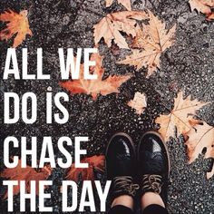 All We Do - Oh Wonder - 12/4/16 - @crystalsouled on Pinterest