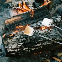 Smores outdoors and camping кемпинг, костёр ve осень Recipes With Marshmallows, Roasting Marshmallows, Marshmallow Recipes, Into The West, Into The Fire, Go Camping, Camping Hacks, Camping Packing, Family Camping