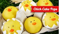 Cake it Pretty: Learn to make your own DIY Hatching Chicks Cake Pops - perfect for a Barnyard birthday party or even Easter! Easter Cake Pops, Easter Cupcakes, Cupcake Cookies, Fruit Cupcakes, Barnyard Cake, Barnyard Party, Purple Velvet Cakes, Pink Velvet, Hatching Chickens