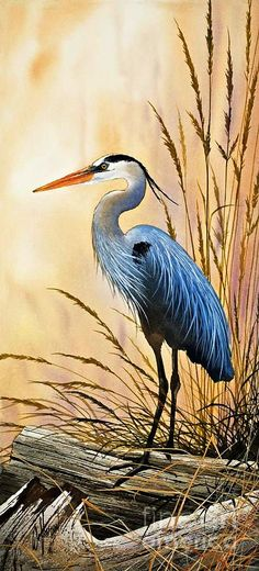 """Bright Shore"" by James Williamson  (Blue Heron Painting)"