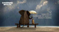 12 FUN Things To Do in Panama City Beach When it Rains
