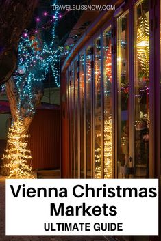 Tips for visiting the Vienna Christmas Markets including which are the best Christmas markets in Vienna, Food and Drinks at Christmas markets in Vienna | Where to stay in Vienna | Christmas market souvenirs in Vienna | What to eat at Vienna Christmas markets | Vienna Christmas Markets Guide | Visitor tips to Vienna Christmas Markets | What to wear to Vienna Christmas markets #Vienna #Austria #Christmas #Travelblissnow