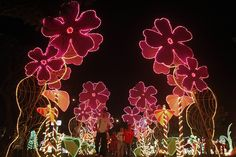 Christmas lights in Cali, Colombia