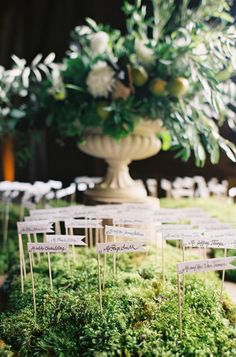 Magical Redwood Grove Wedding