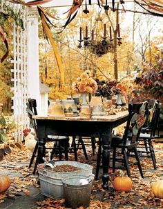My Finer Consigner: Feeling Like A Fall Day