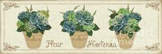 New print available on plout-gallery.artistwebsites.com! - 'Fleur Hortensia-jp3017' by Jean Plout - http://plout-gallery.artistwebsites.com/featured/fleur-hortensia-jp3017-jean-plout.html