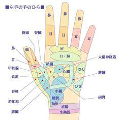 左手の手のひらの画像に、対応する体の部位が記されている画像。