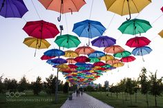 Umbrella the sky by JinHoKim5. @go4fotos