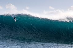 Another part of Western Australia, doing its thing. Photo: Robson Images
