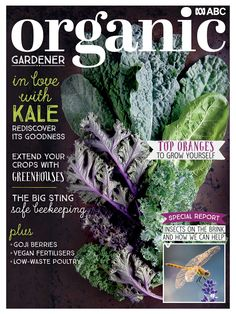 Bee Keeping, Organic Gardening, Free Ebooks, Berries, Latest Issue, Magazine, Grow Your Own, Fruits And Vegetables, Advice