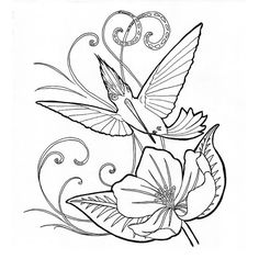 200 Hummingbird / Daily Doodle / Illustration / Coloring Page / Adult Coloring Hummingbird Sketch, Cute Dog Drawing, Printable Pictures, Coloring Book Pages, Doodle Art, Adult Coloring, Pencil Drawings, Embroidery Patterns, Original Artwork