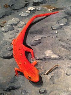 Red Eft by MegGregoryArtist on Etsy