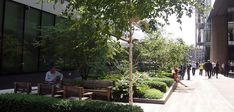 Townshend Landscape Architects - Projects - Angel Lane