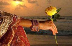 Te desejo Nesta Semana Paciência para as dificuldades Tolerância para as diferenças Benevolência para os equívocos Misericórdias para os erros Perdão para as ofensas Equilíbrios para os desejos Sensatez para as escolhas Sensibilidades para os olhos Delicadezas para as palavras Coragem para as provas Fé para as conquistas E amor para todas as ocasiões...