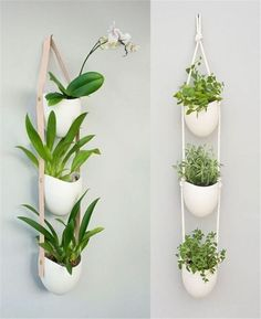 Beautiful DIY indoor hanging plants for your home. Over twenty five DIY indoor hanging plants decor ideas. Feed your design ideas now. Plant Wall Decor, Indoor Plant Wall, Indoor Planters, Garden Planters, Indoor Window Planter, Hanging Plant Wall, Window Plants, Modern Planters, Window Hanging