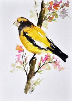 ORIGINAL Watercolor Bird Painting Yellow Bird von ArtCornerShop